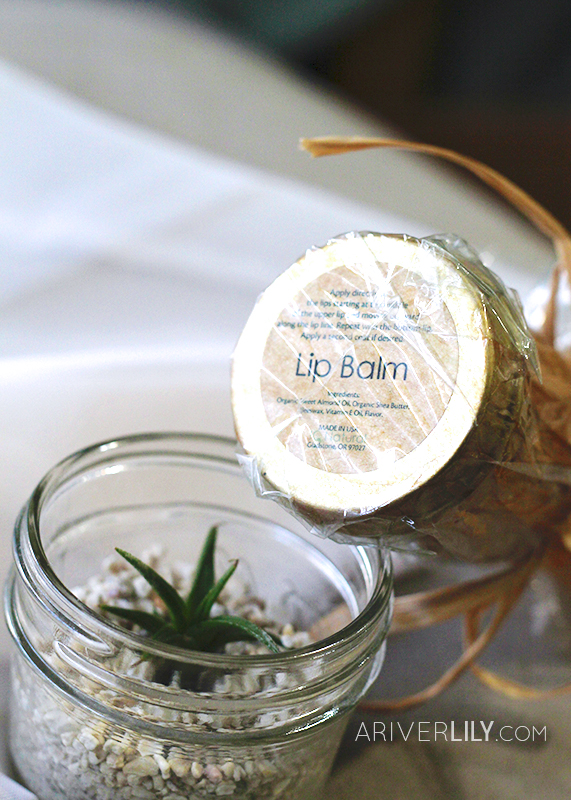 IQ Natural Skincare Lip Care Kit Balm Scrub Organic Honey Pina Colada Pineapple Flavor - bottom packaging air plant tillandsia